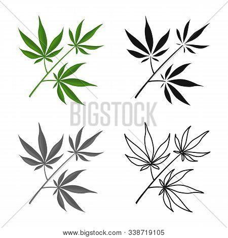 Vector Design Of Marijuana And Leaf Sign. Web Element Of Marijuana And Vegetation Vector Icon For St