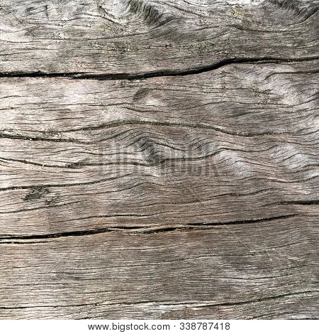 Old oak rustic wooden slab forming an abstract textured ackground.