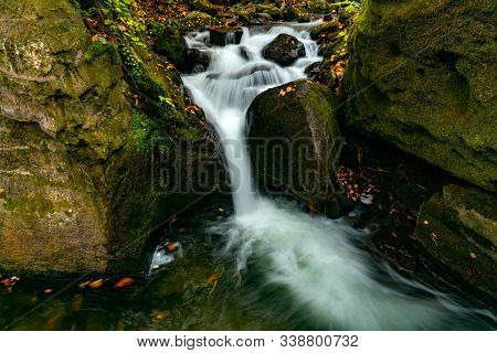 Oirase Mountain Stream Flow Passing Green Mossy Rocks Covered With Colorful Falling Leaves Of Autumn