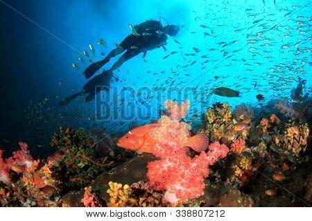 Scuba divers explore underwater coral reef