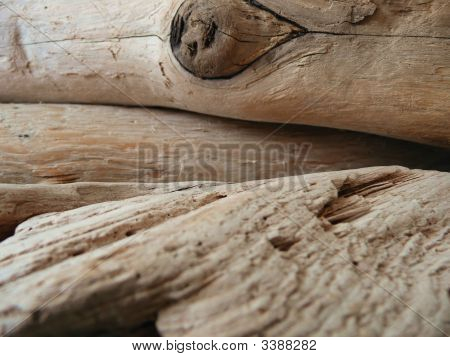 Driftwood Close-Up