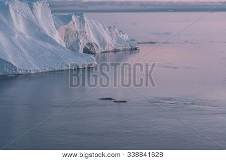 3 Humpback Whale Dive Near Ilulissat Among Icebergs During Pink Midnight Sun. Sunrise And Sunset. Th