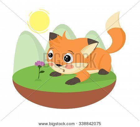 Cartoon Surprised Cute Little Fox Found A Flower. Hand Drawn Foxy. Cartoon Character Fluffy Pet Anim