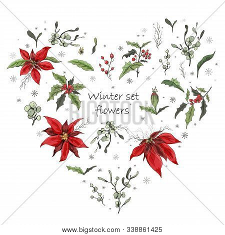 Hand Drawn Set Of Heart-shaped. Realistic, Botanical Doodles. Modern Flowers (poinsettia, White Mist