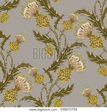 Hand Drawn Composition Of A Thistle Flower. Seamless Pattern With Milk Thistle On Background Of Past