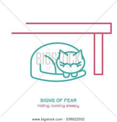 Cat Fearful Behavior Signal. Domestic Animal Or Pet Body Language. Fear And Anxiety. I Am Hiding. Ki