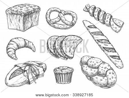 Set Of Isolated Bread Food Sketches. Yeast And White Flour Nutrition. Croissant And Baguette, Cake A