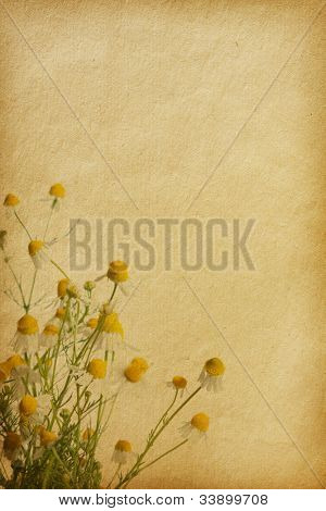 vintage floral paper textures.
