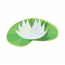 Vector Illustration Of Flower And Lotus Icon. Set Of Flower And Leaf Stock Symbol For Web.