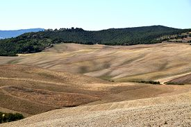View Of The Rolling Sienese Hills In Tuscany-italy