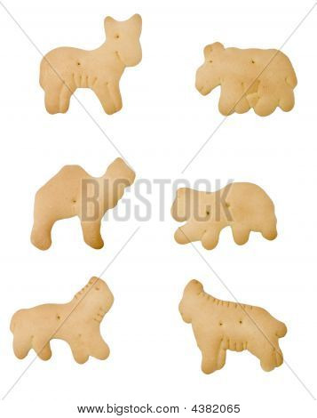 Isolated Animal Crackers