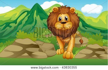 Ilustrace lva s horskou scenerií na zadní straně