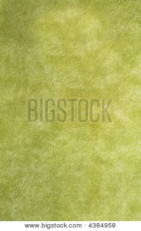 Bright, Grunge, Marsh (green) Book Cover With Cracks
