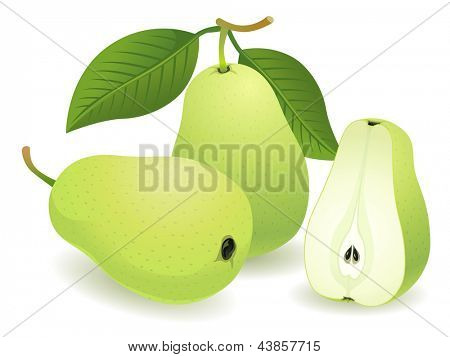 Pear, Isolated Vector Fruit