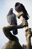 pigeons sitting on the sculpture in the park of Palazzo Pitti. Florence Italy poster