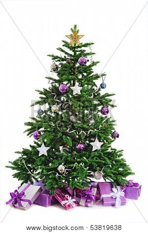 bare Chistmas tree  isolated on white background