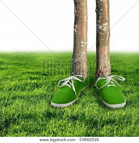 Green Carbon Footprint Concept