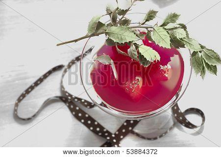 Martini Red Cocktail Christmas