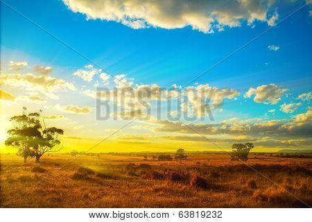Sunset over Australian backyard