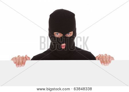 Burglar With Balaclava Holding Blank Placard Isolated On White Background poster
