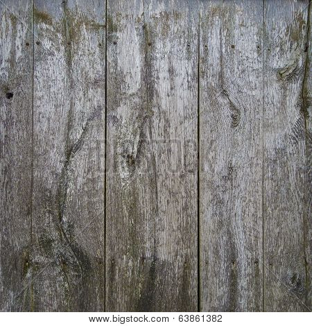 rundown wooden planks