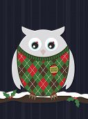 snowy owl wearing a christmas sweater perched on branch poster