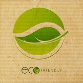 Beautiful Eco Friendly concept with stylish green leaves on grungy brown background.  poster