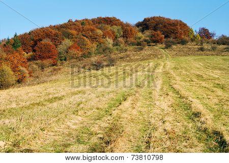 Autumnal View Of Strazov Mount In Strazovske Vrchy