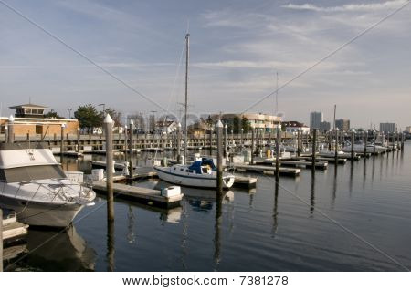Marina At Brigantine New Jersey