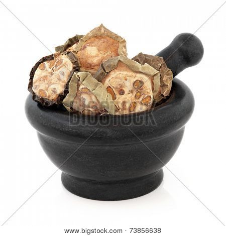Chinese cucumber used in herbal medicine in a marble mortar with pestle over white background. Gua lou.