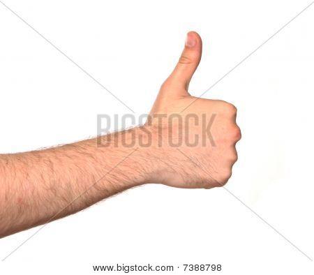 Men's Hand
