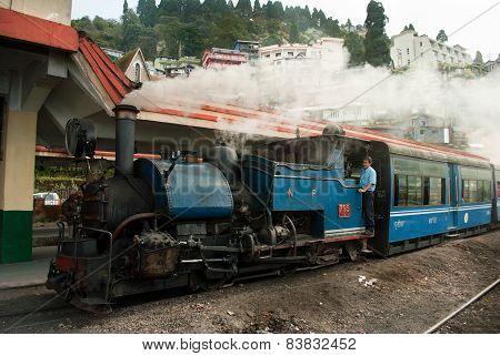 The Darjeeling