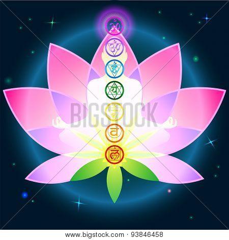 Chakras Lotus