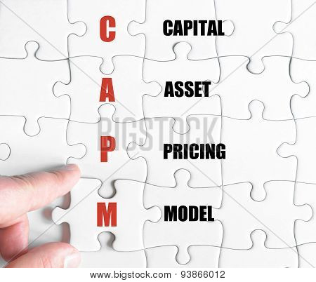Last Puzzle Piece With Business Acronym Capm