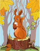 squirrel with acorn in autumn forest. No gradient. poster