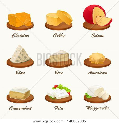 Set of different kinds of cheese on cutting board. Realistic vector illustration. Cheese Collection.