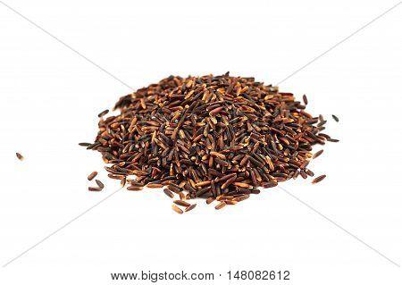 Grain black jasmine rice or Thai name is Hom Nil rice on white background.