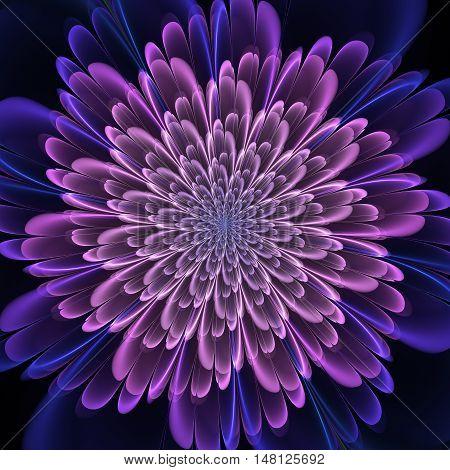 Fractal Art Petals