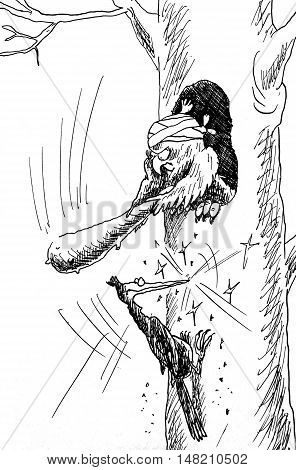Owl Hates Woodpecker. Hand drawn sketch with ink and pen on paper