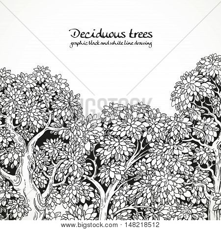 Background with graphically drawing trees black and white