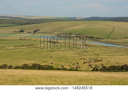 The River Cuckmere estuary with meanders at Cuckmere Haven in East Sussex England