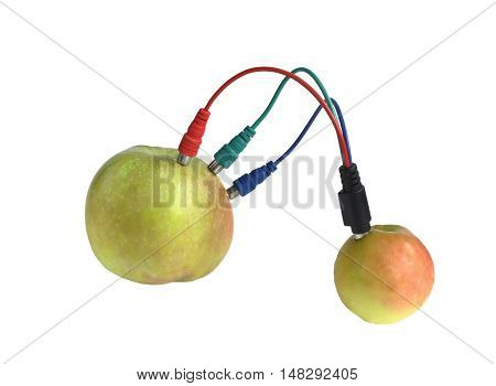 paradox. two fruits are connected by cable to exchange information. isolate on white background without shadows. easy to cut for your project.
