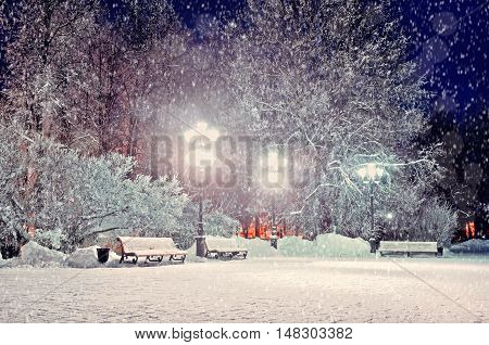 Winter night city landscape. Winter landscape view- winter evening in the night snowy park with benches under winter snowfall.