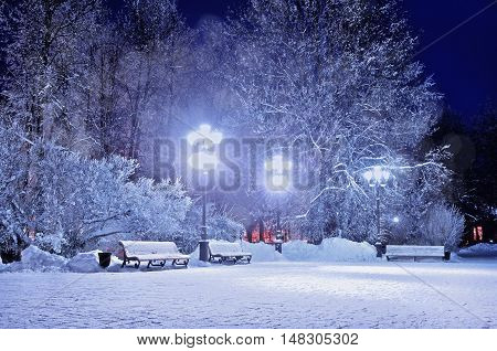 Winter night. Winter landscape- winter in the night snowy park with benches covered with snow. Night winter park landscape. Winter park with frosty winter trees -winter view in cold tones