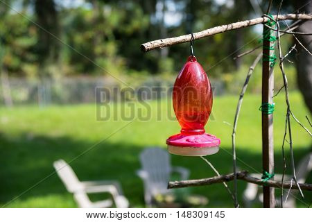 Red Hummingbird feeder fill with sweet home made nectar of sugar water
