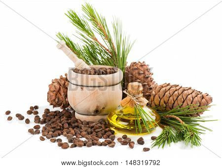 Cedar cones oil pine nuts in a mortar cedar twigs isolated on white background.