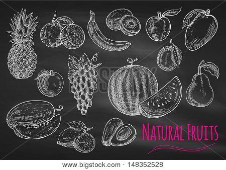 Fruits chalk sketch on blackboard. Isolated vector icons of exotic and tropical pineapple, orange, apple, melon, lemon, banana, grape, avocado, watermelon, kiwi, apricot peach mango pear plum