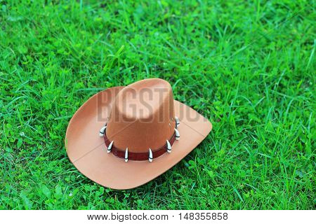 Top View Of Brown Cowboy Hat On Green Grass