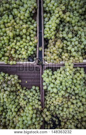 Grapes in a market in Toulouse in France Europe