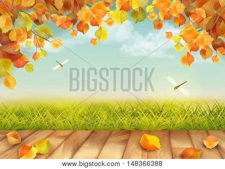 Vector autumn landscape with grass, dragonflies, tree branches, textured wooden floor